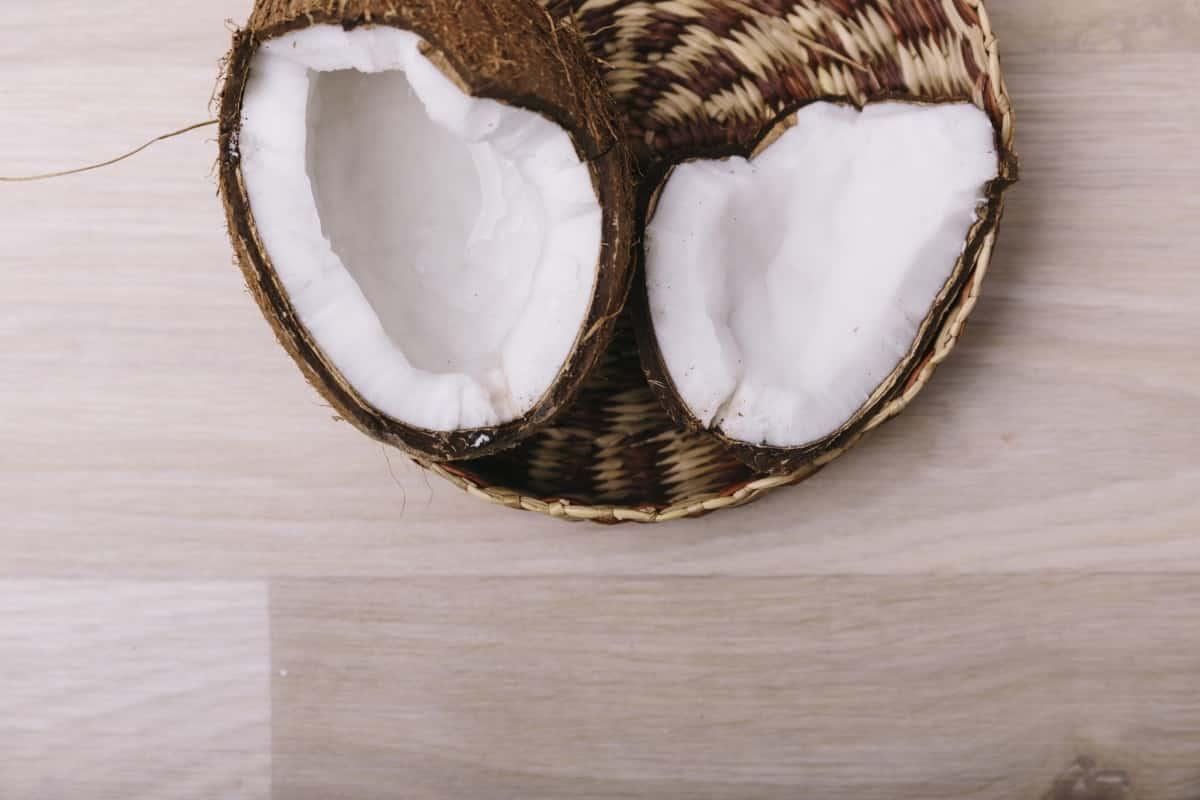 ココナッツオイルのヤシの実
