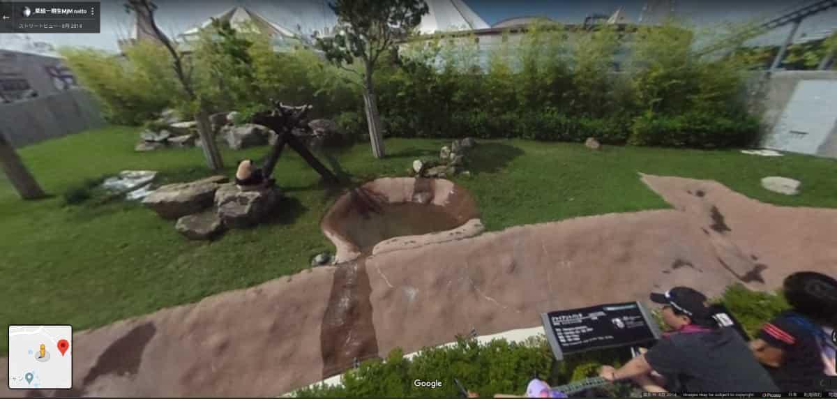 和歌山白浜アドベンチャーワールドのパンダ