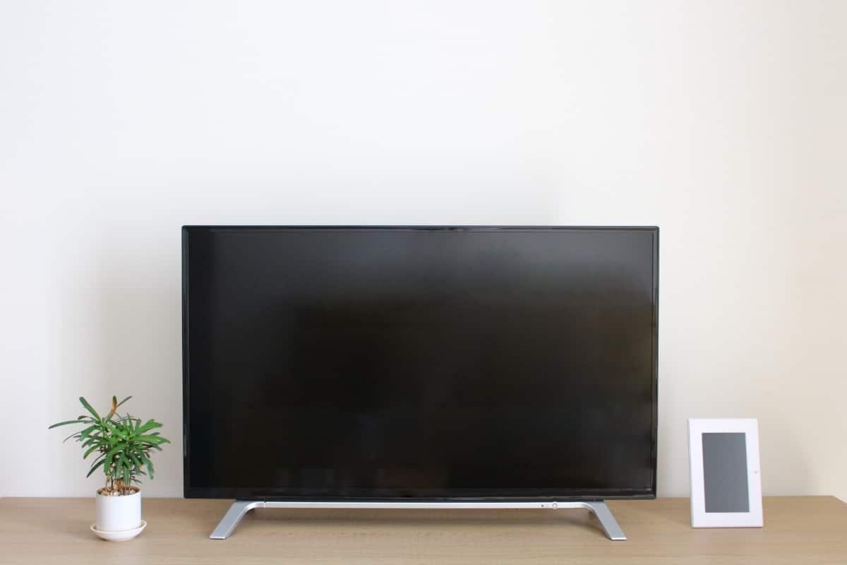 テレビは必要か不必要か