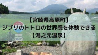 【宮崎県高原町】 ジブリのトトロの世界感を体験できる 【湯之元温泉】