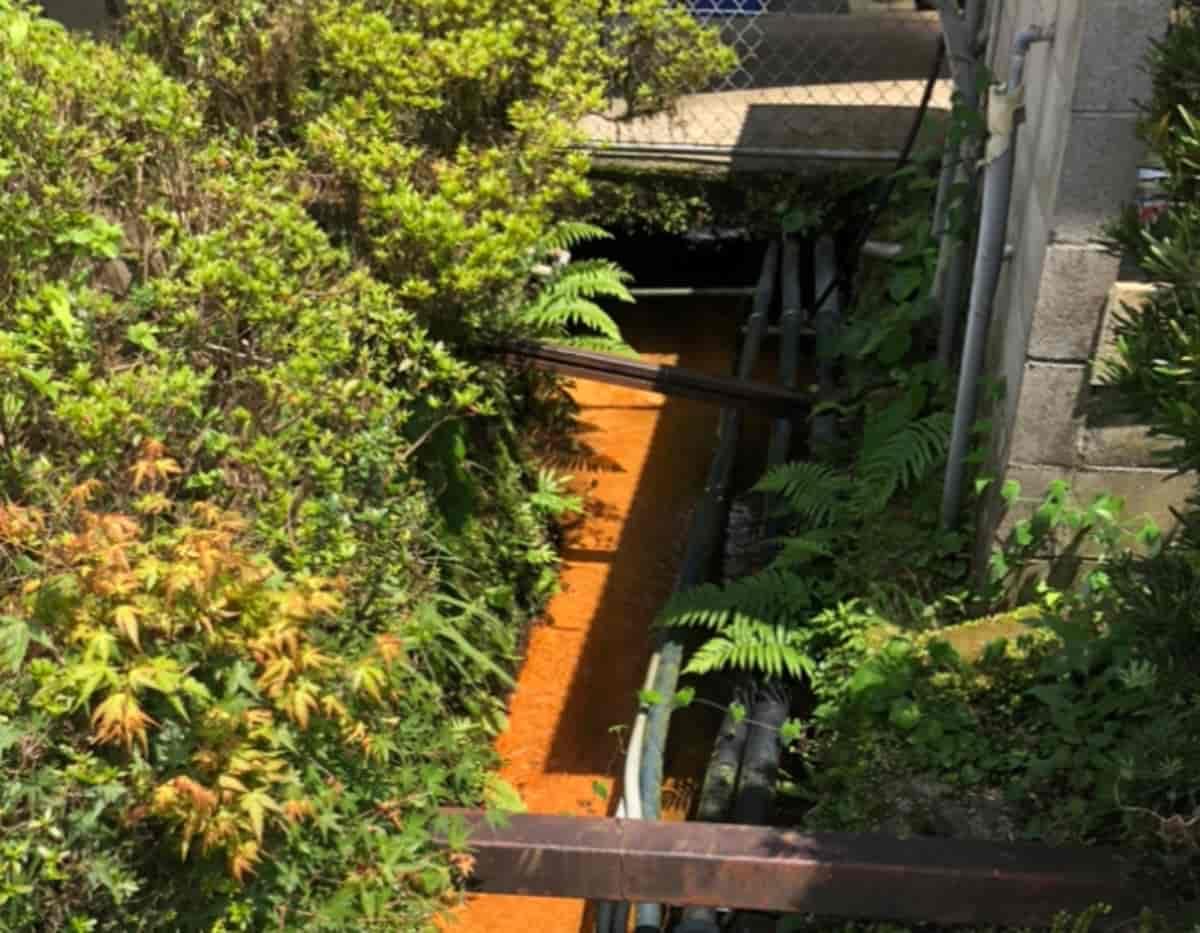 湯之元温泉の外に流れる鉱泉