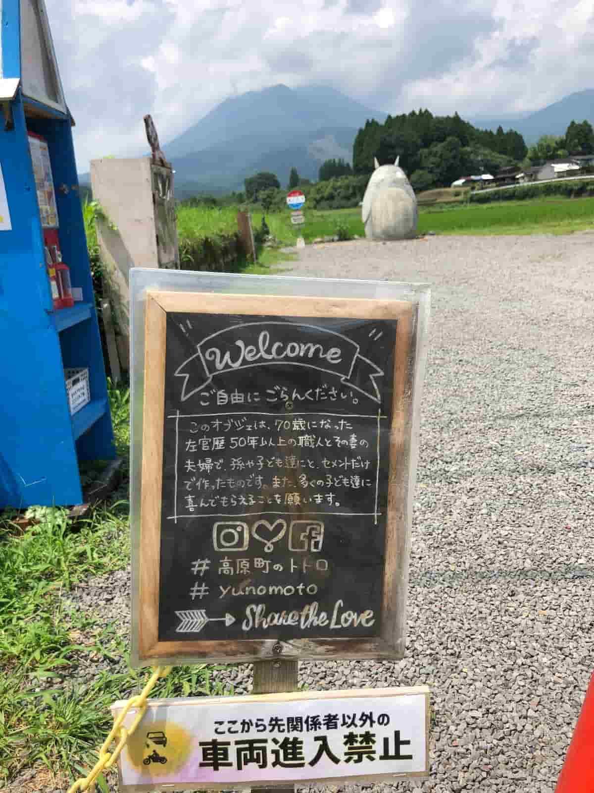 高原町のトトロ撮影の注意点