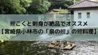 鯉こくと刺身が絶品でオススメ 【宮崎県小林市の「泉の鯉」の鯉料理】